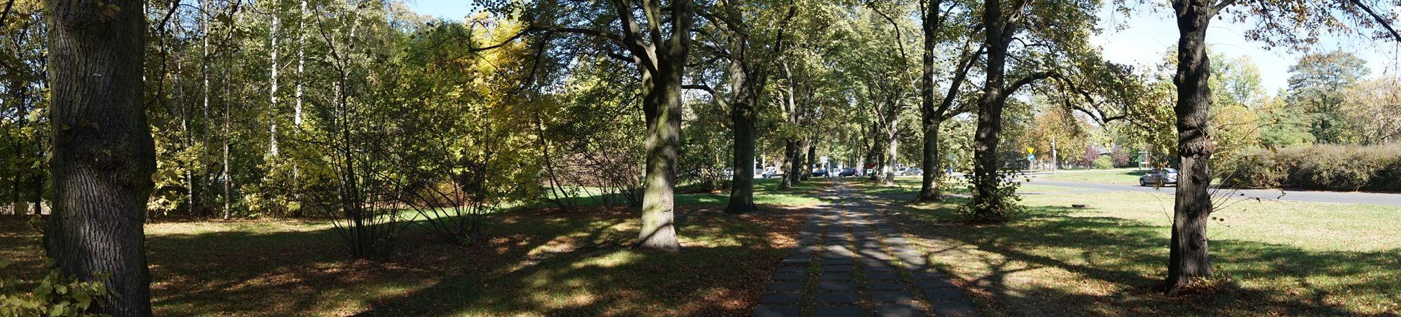 Konstantynowska - przy ogrodzie botanicznym