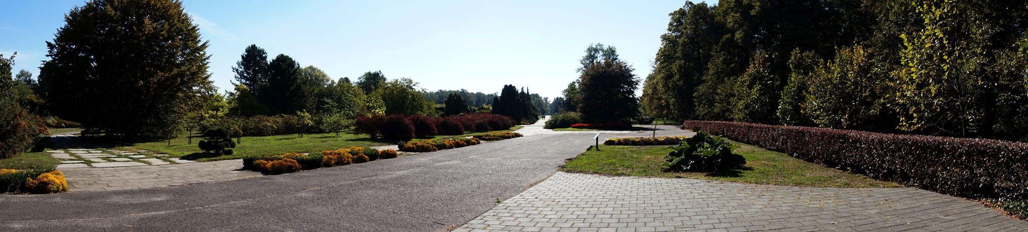Ogród Botaniczny 1