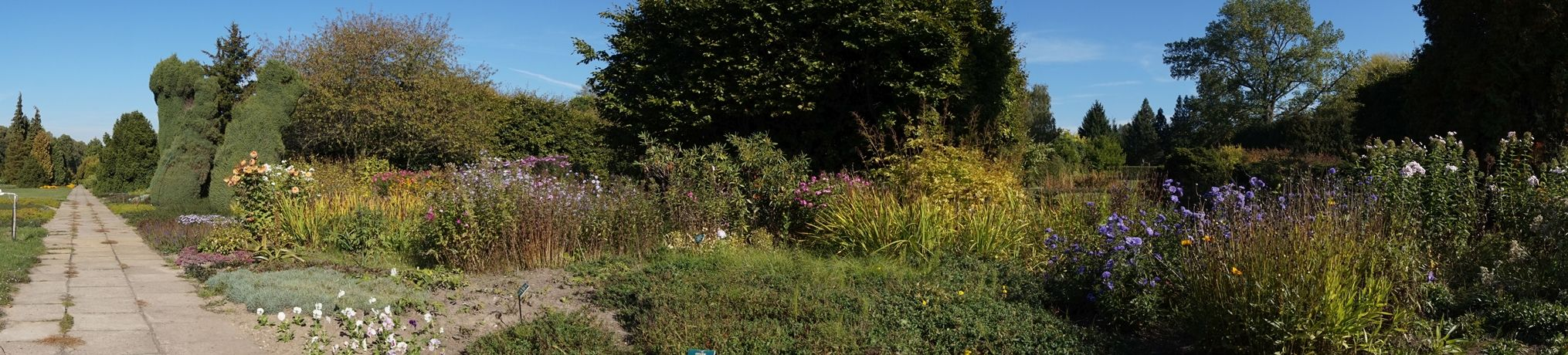Ogród Botaniczny 10