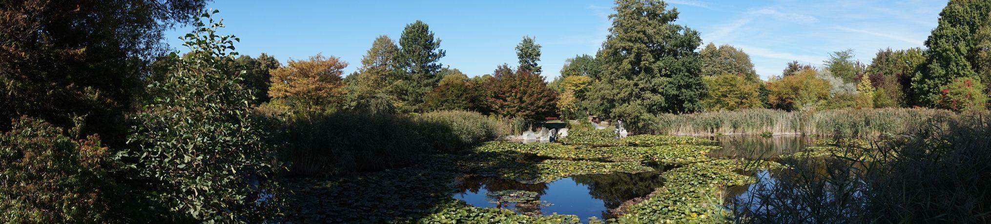 Ogród Botaniczny 5