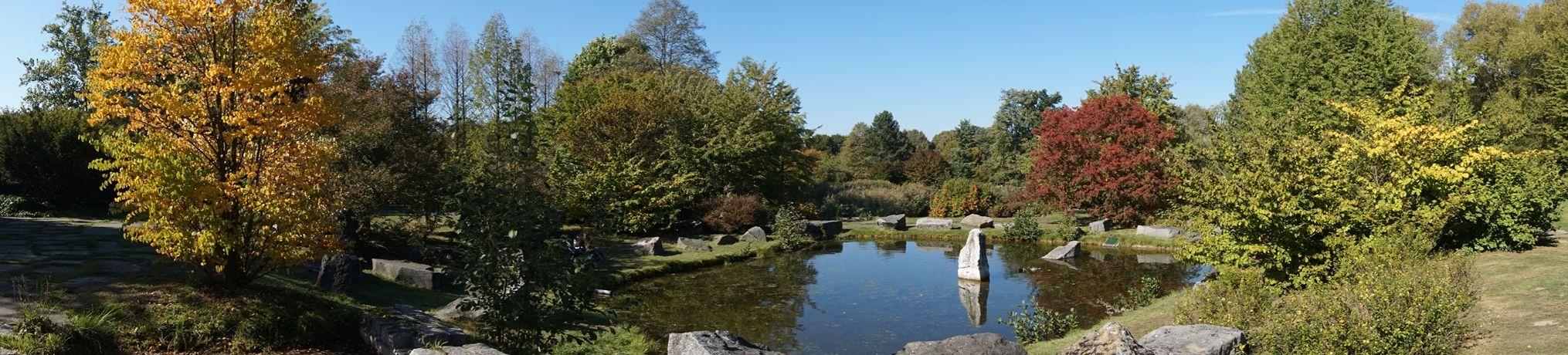 Ogród Botaniczny 6