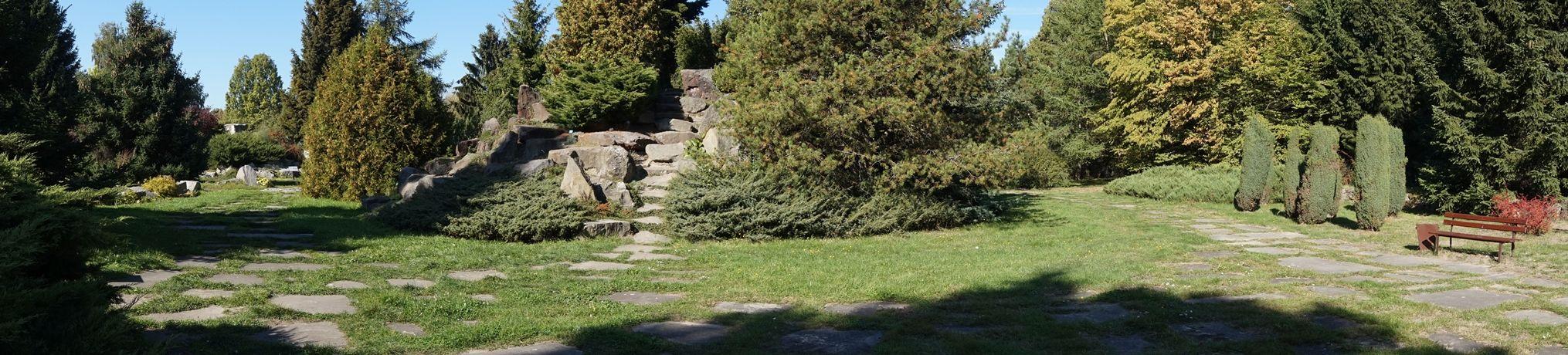 Ogród Botaniczny 7
