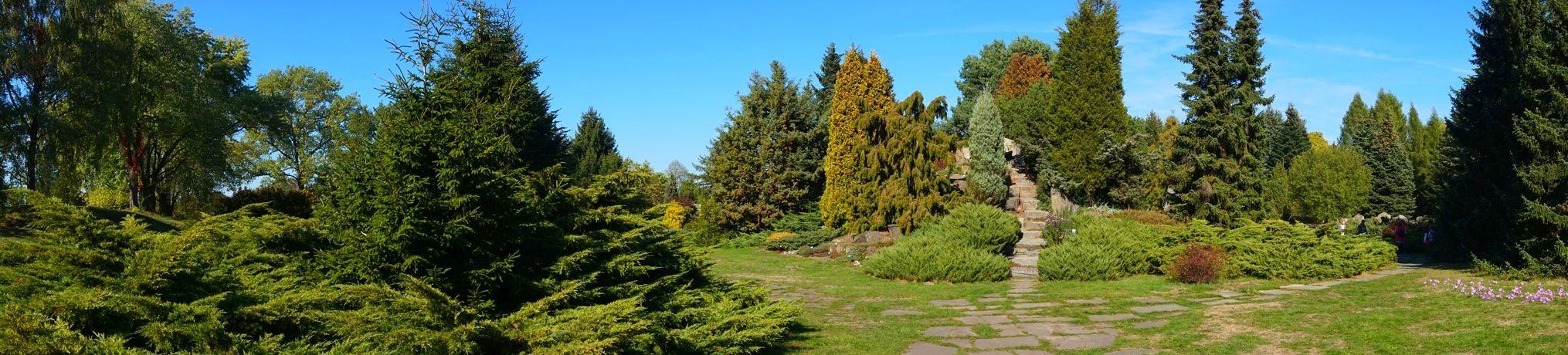 Ogród Botaniczny 8