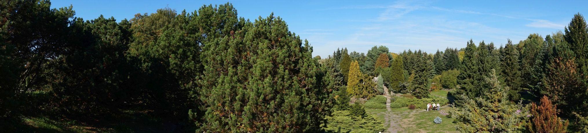 Ogród Botaniczny 9