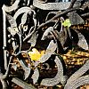 na-starym-cmentarzu